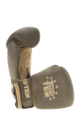 Boxhandschuh TOP TEN